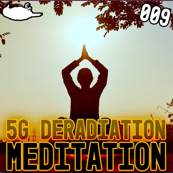 EP 009 - 5G Deradiation Meditation